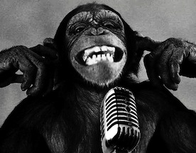 sound-design-live-bad-microphone-monkey